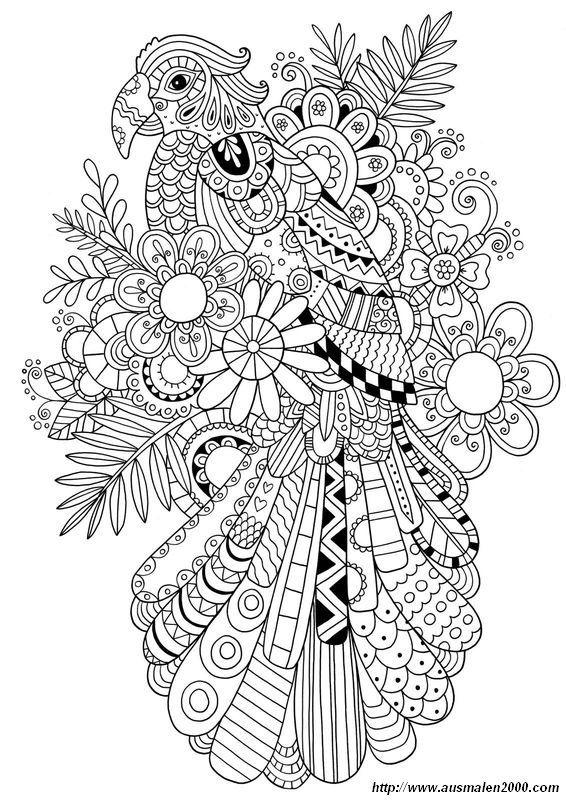 Remarquable  Mot-Clé Ausmalbilder Für Erwachsene, bild Papagei zum dekorieren