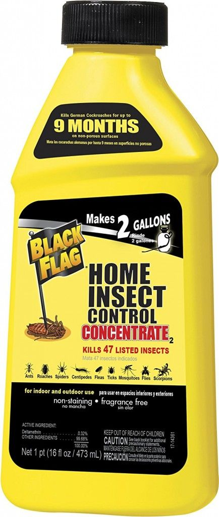Black Flag Extreme Home Insect Control Insect Control Pest Control House Insects