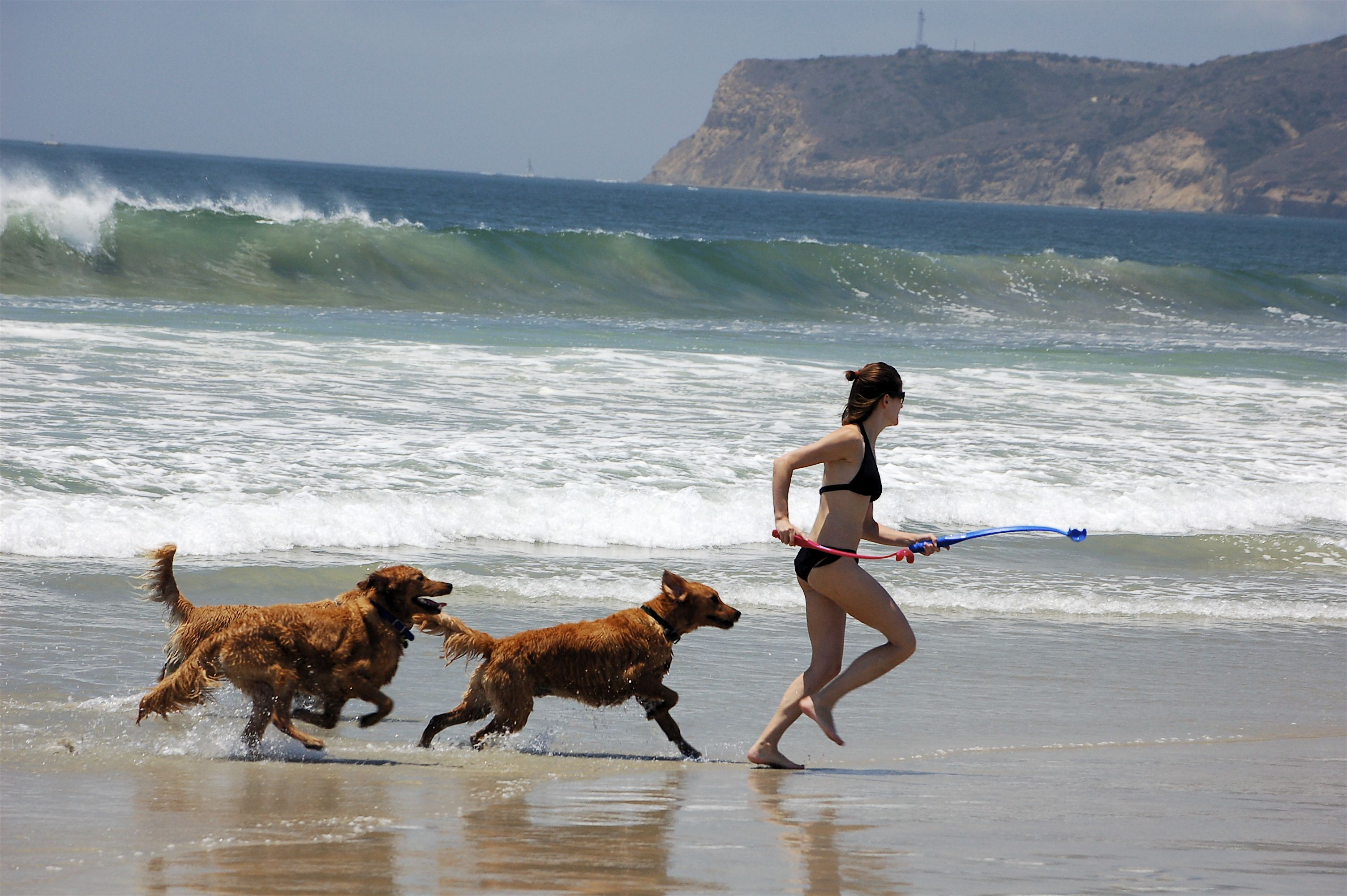 San Diego S Beaches Are World Famous For Their Excellent Surf