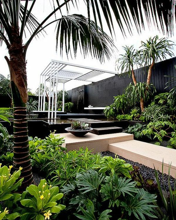 Moderne Gartenbeete gartenbeete gestalten exotisch palmen palm driveway