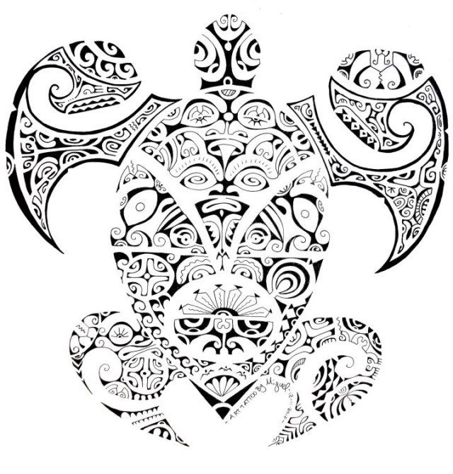 Top Dessin ou Croquis de Tortue Maori Polynésienne | Art Polynésien  OD56