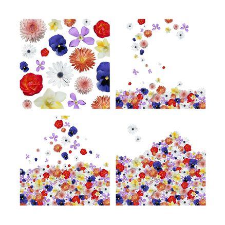 Colección 4 Cuadros Colección Raining Flowers by NURKIDS COLLECTIONS de Barcelona