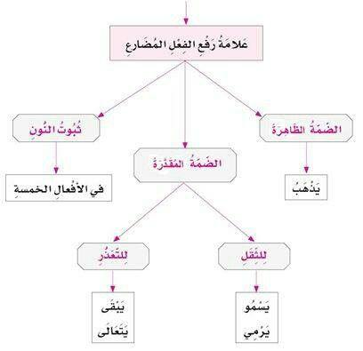 الفعل المضارع Learning Arabic Learn Arabic Language Arabic Language