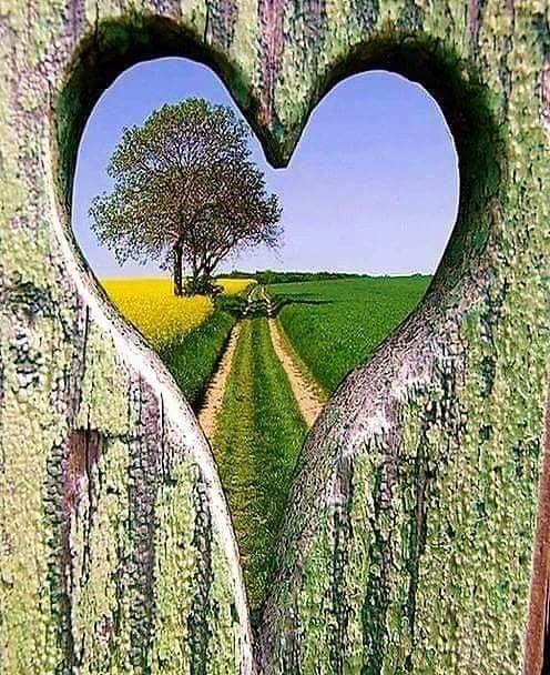 Днем, открытка путь к сердцу