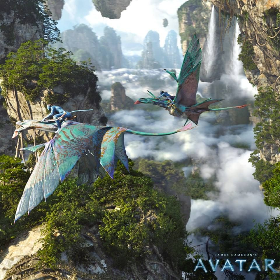 109 Best Images About Avatar The Movie On Pinterest: Avatar The Flight Scenes Were The Best