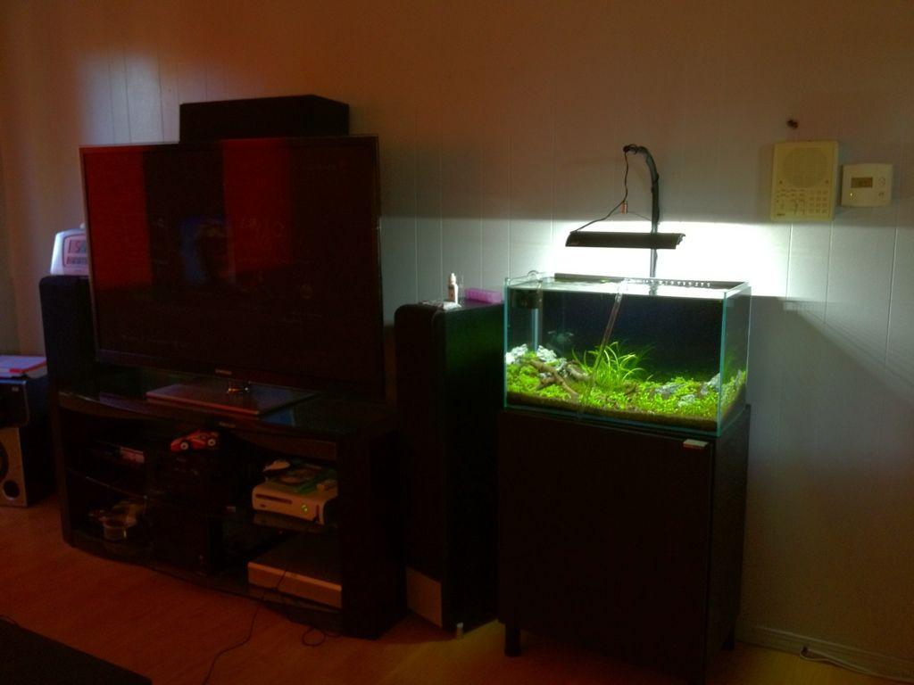 Ikea Besta Aquarium Stand Google Search Aquarium Pinterest # Muebles Pecera Ikea