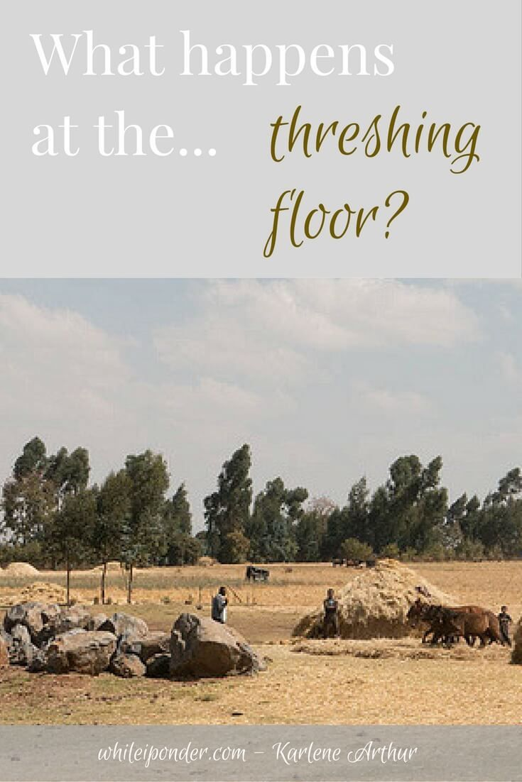 What Do We Find At The Threshing Floor? Security, Provision, Redemption,  Deliverance