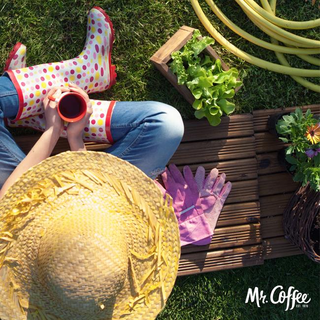 Plants & Shrubs That Like Coffee Grounds | Gardening courses, Organic vegetable garden, Garden pests