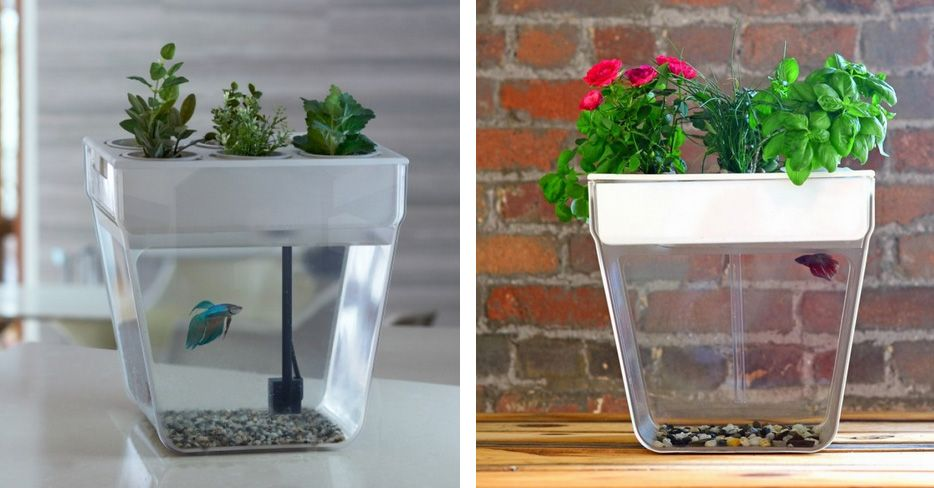 Superior Stories   Cool Planters, Pots, And Vases (Part 2: Multi Functional)   Axka