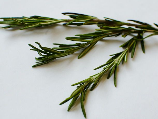 ideas for rosemary