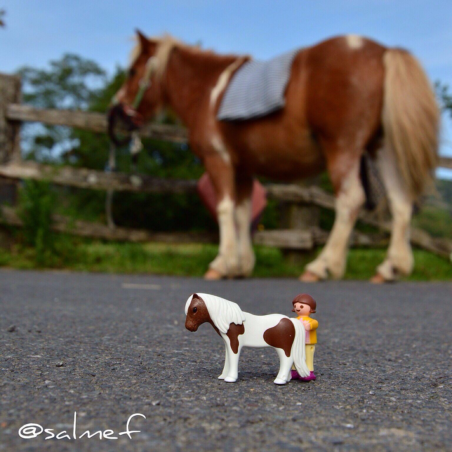 La pequeña de #crisalmar de paseo con el poni