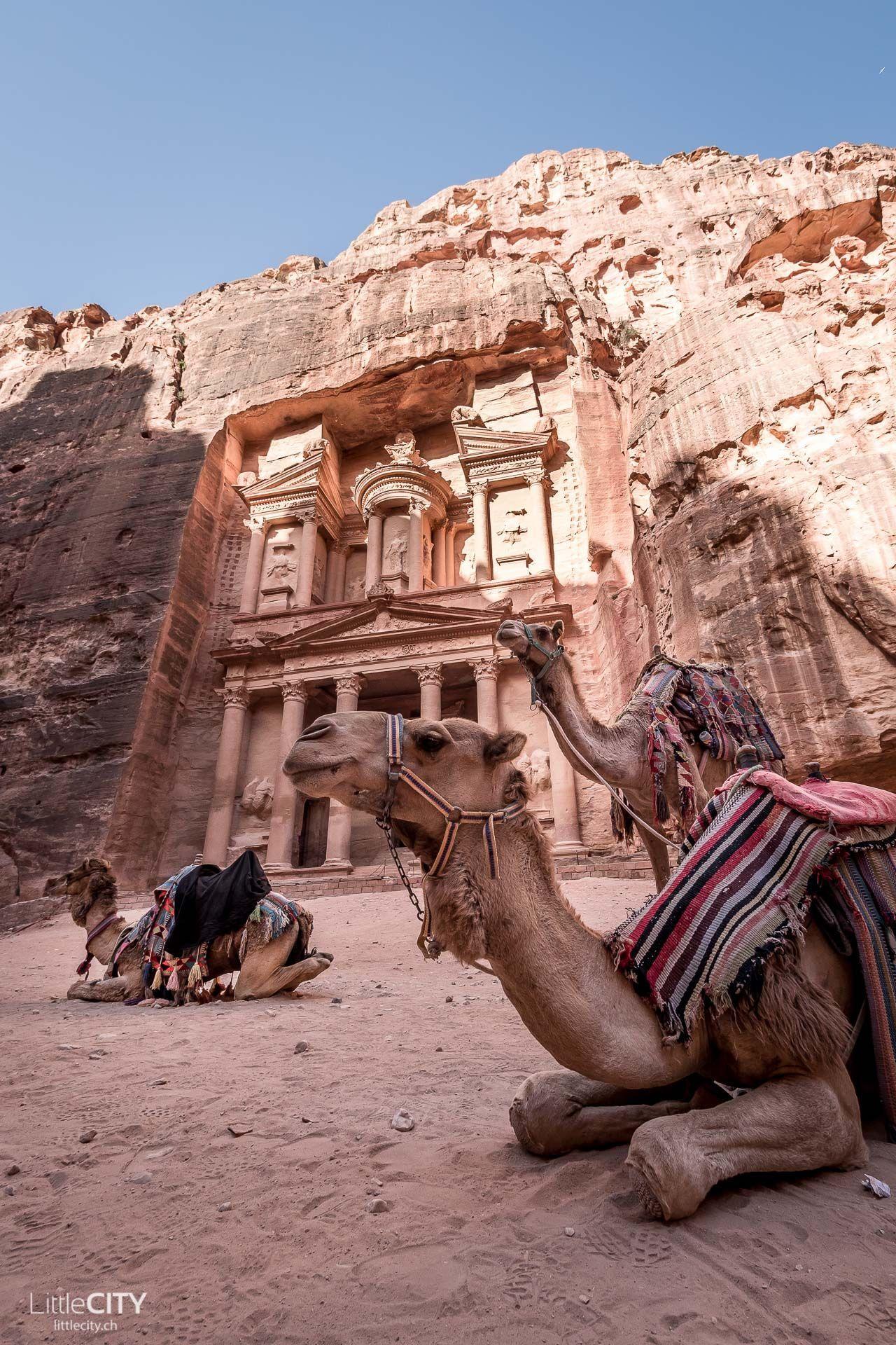 Petra Jordanien Hilfreiche Reisetipps Spannende Fakten Petrajordan Petra Jordanien Reisetipp Fakten Bauwe City Of Petra Petra Jordan Petra Jordan Travel