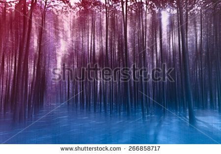 blurred abstract background photo of forest with surreal motion blur effect
