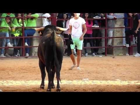 ▶ Villalpando: Toro del Alba 2013 - YouTube