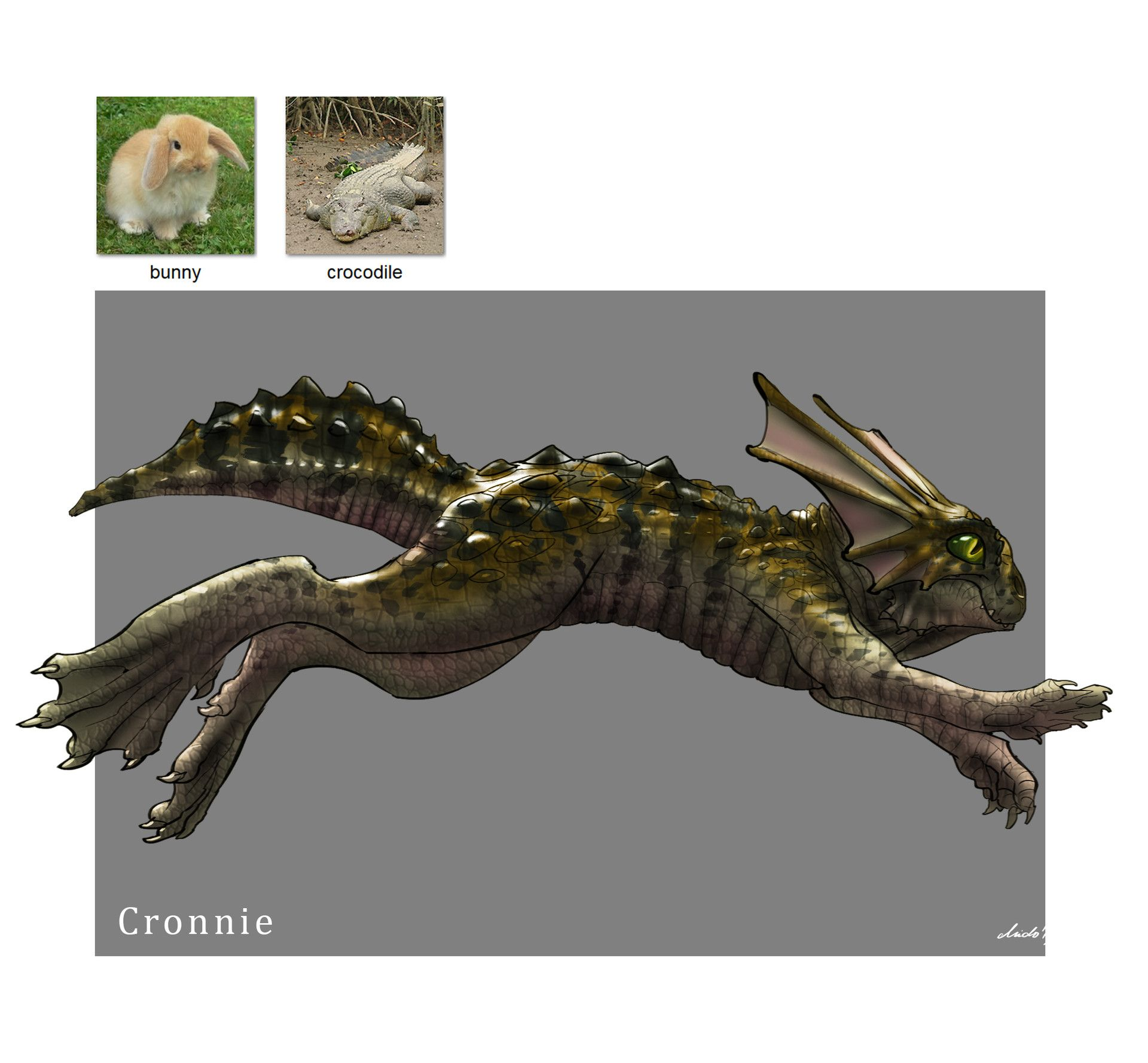 Ive discovered a random animal generator online that