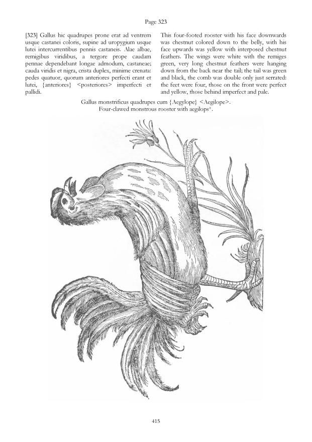2009 - The Chicken of Ulisse Aldrovandi - by Elio Corti & Fernando Civardi - An English translation of the chapters on chickens from the famous book âOrnithologiaeâ by Aldrovandi.