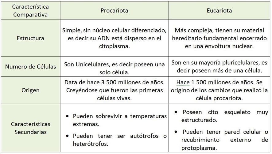 Cuadros Comparativos Entre Tornados Y Huracanes Diferencias Cuadro Comparativo Celula Procariota Y Eucariota Eucariota Células Procariotas