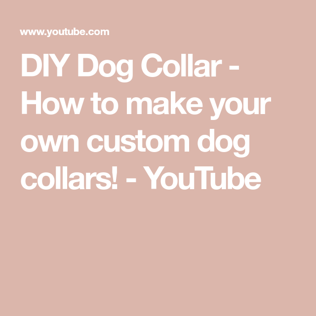 How To Make Your Own Custom Dog Collars