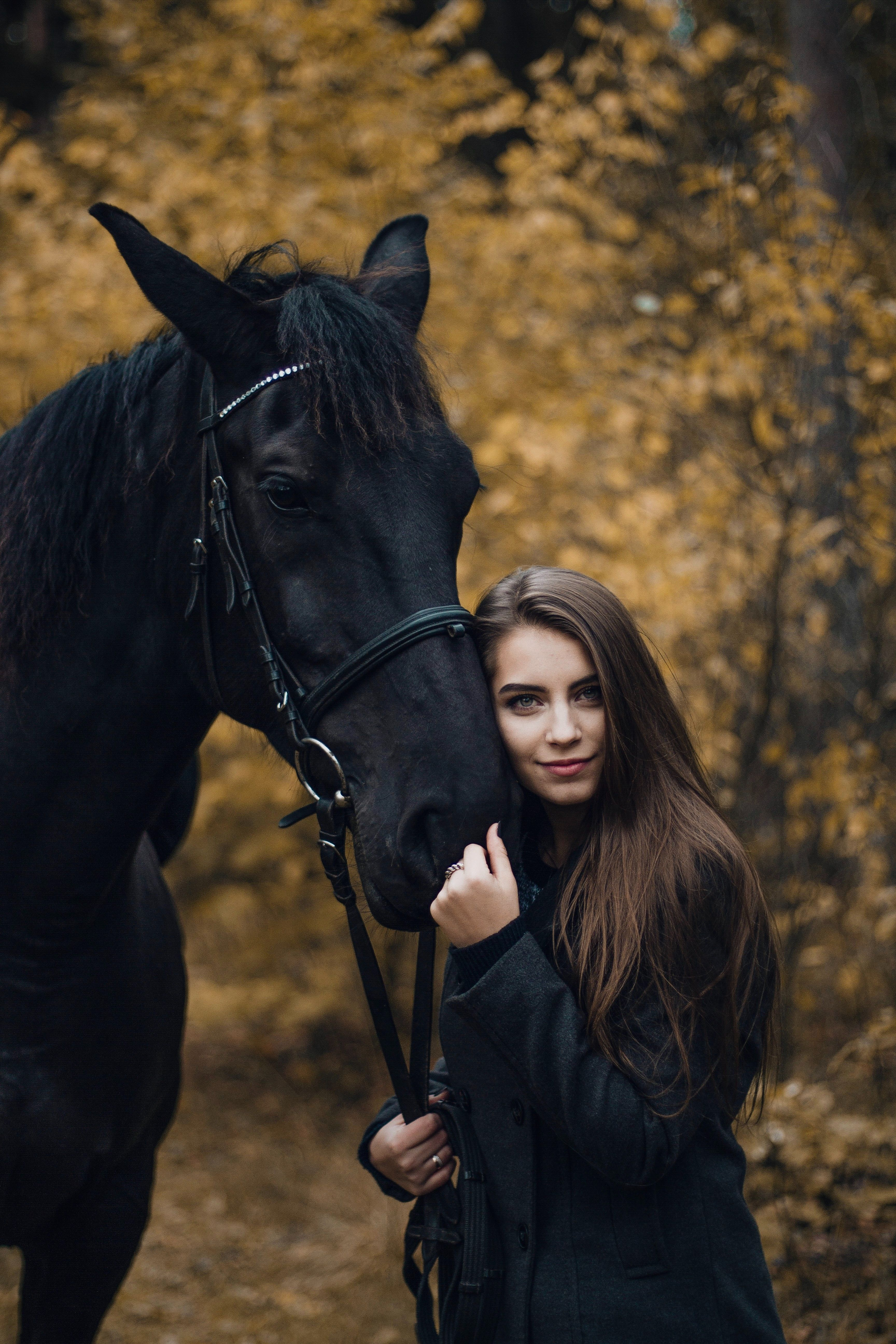 The Horse Course 102 | Horse girl photography, Horses ...