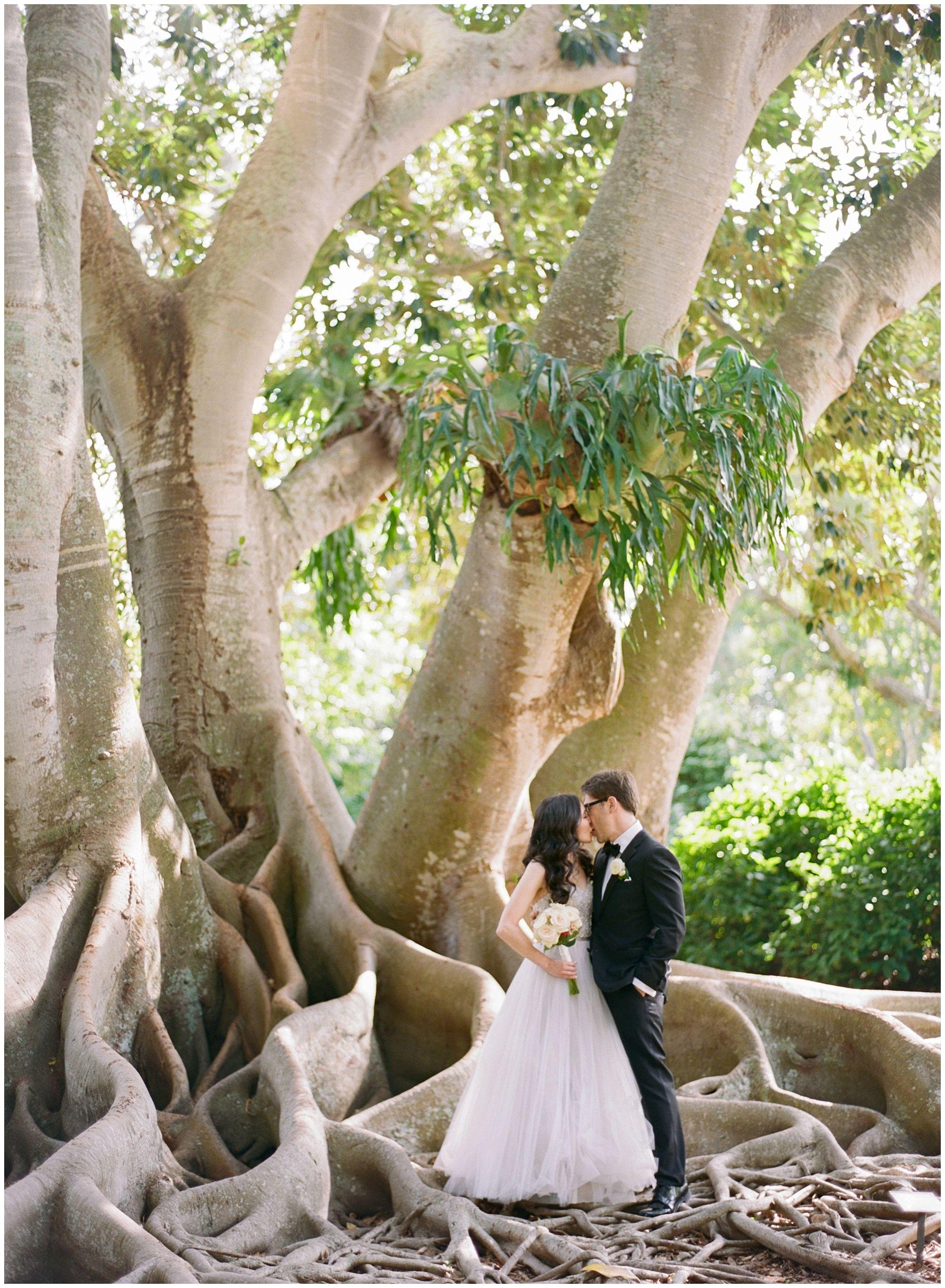 Marie Selby Botanical Gardens Wedding Botanical Gardens Wedding Wedding Photography Inspiration Wedding