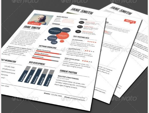 Infographic Style Resume Template Ver   Infographic Resume