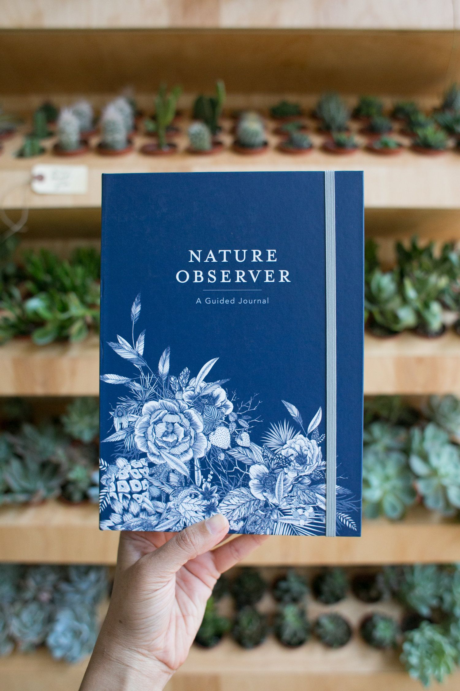 Book Nature Observer A Guided Journal Plant Crafts Nature