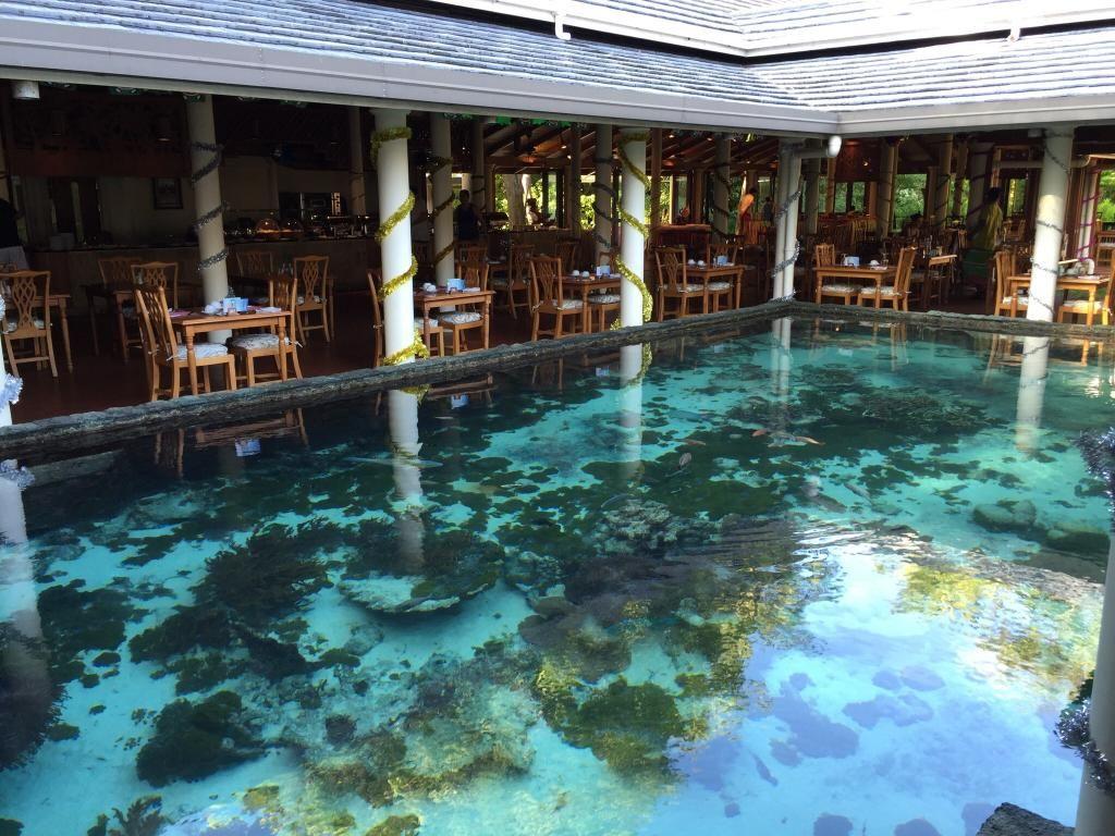 Royal Island Resort & Spa 5*, Horubadhoo Island: Читайте объективные ...