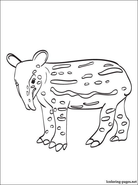 Tapir Coloring Pages For Kids Hulk Coloring Pages Coloring Pages Star Coloring Pages