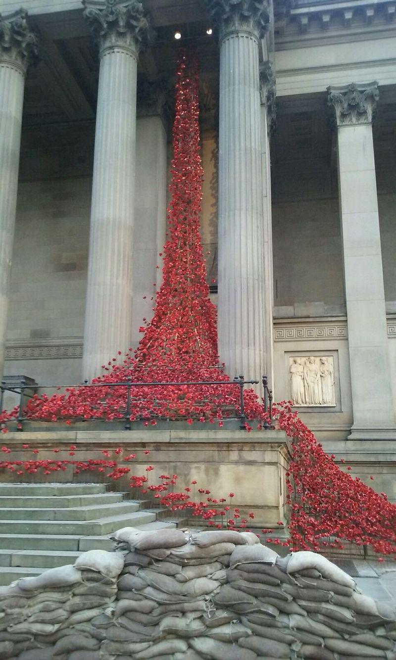 Symbolism Of The Poppy