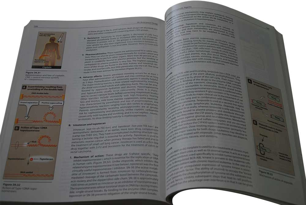 Pharmacology - 5th Edition (Lippincott's Illustrated Reviews)