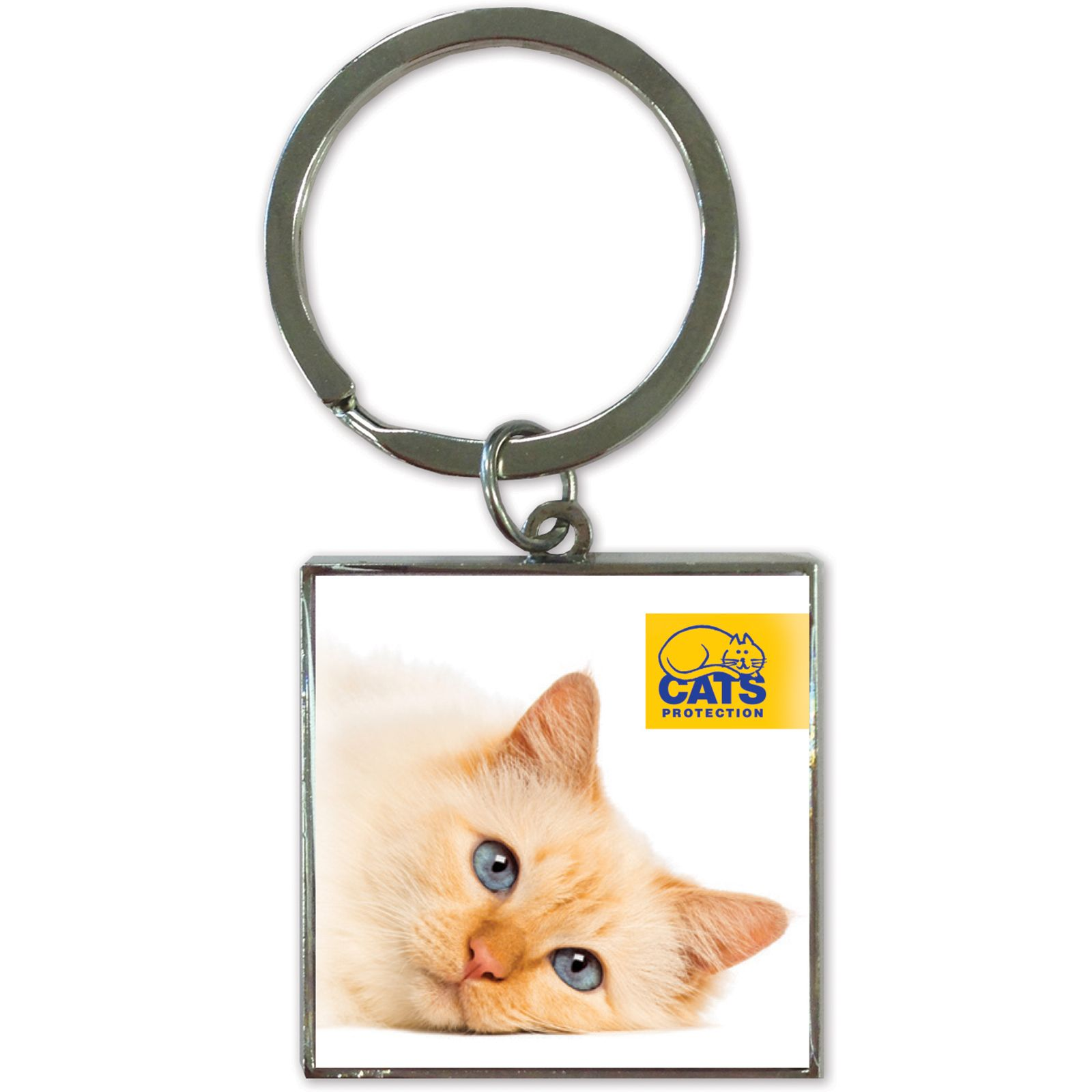 Cats Protection Key Ring - Ginger Cat