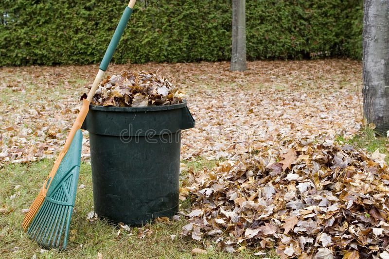 Autumn Leaves In A Garbage Can  Horizontal Stock Photo  Image of garbage maple 21102490 Autumn leaves in a garbage can  Horizontal  Autumn Leaves In A Garbage Can  Horizo...