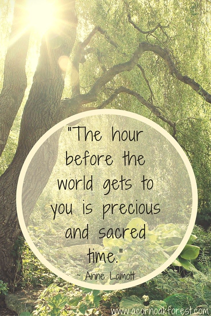 """The hour before the world gets to you is precious and sacred time."" Anne Lamott - 10 People with Thoughtful Morning Routines to Inspire You - Acorn * Oak * Forest"