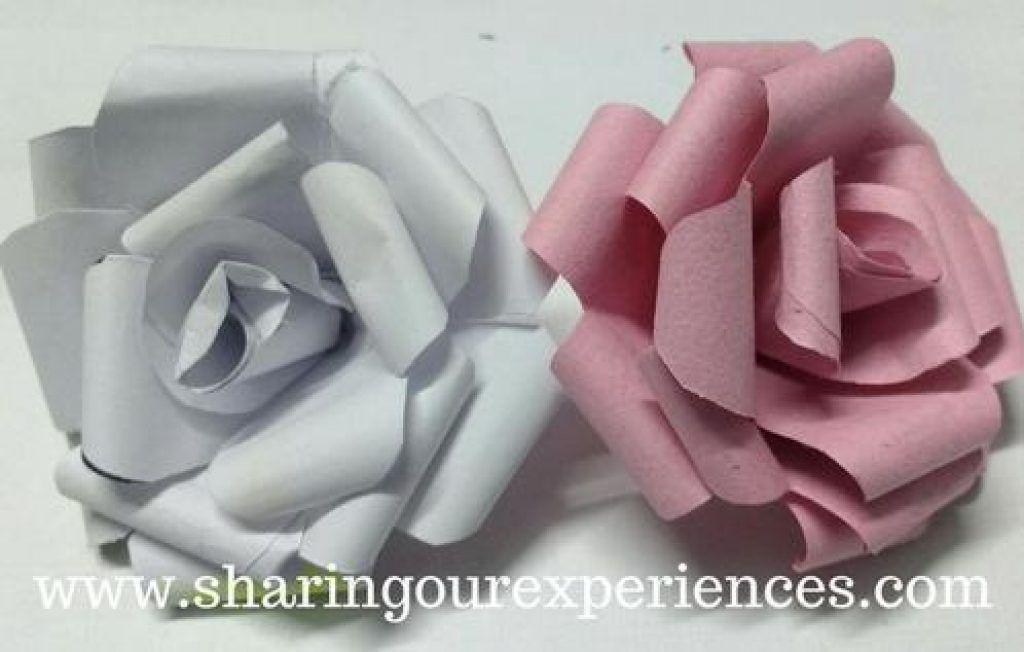 How to make Crepe Paper Rose buds | Sharing Our Experiences #crepepaperroses How to make Crepe Paper Rose buds | Sharing Our Experiences #crepepaperroses How to make Crepe Paper Rose buds | Sharing Our Experiences #crepepaperroses How to make Crepe Paper Rose buds | Sharing Our Experiences #crepepaperroses How to make Crepe Paper Rose buds | Sharing Our Experiences #crepepaperroses How to make Crepe Paper Rose buds | Sharing Our Experiences #crepepaperroses How to make Crepe Paper Rose buds | Sh #crepepaperroses