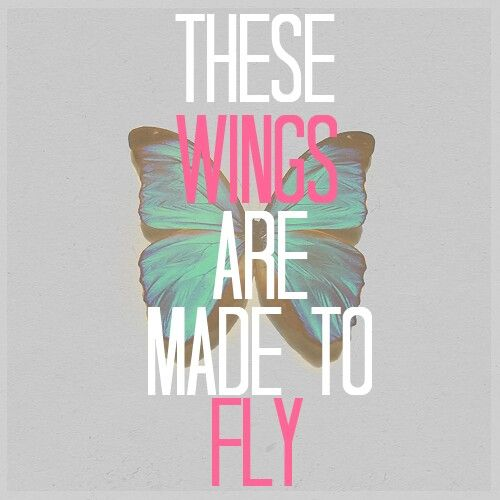 Wings are made to fly