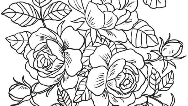 Gambar Bunga Mawar Art Di 2020 Bunga Gambar Sketsa
