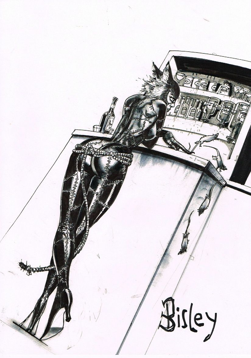 Catwoman by Simon Bisley