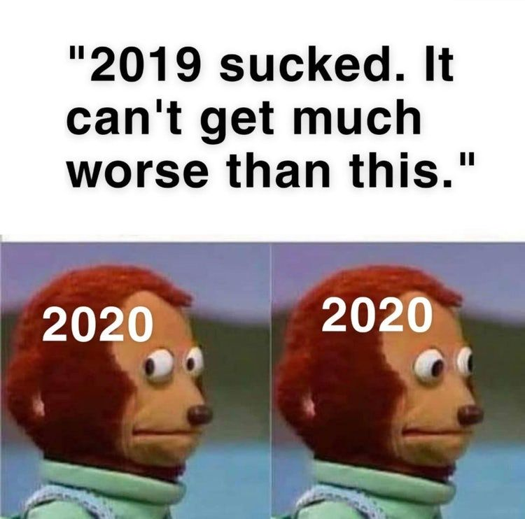 32 Memes That Prove 2020 Is The Worst Year We Ve Had In A While Funny Relatable Memes Bee Movie Memes Stupid Memes