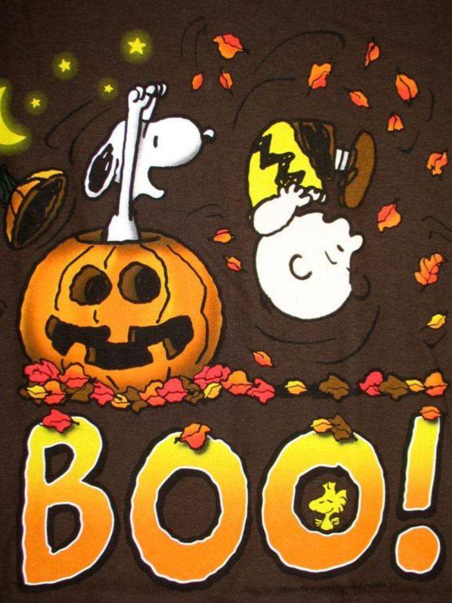 i love snoopylol | halloween/decor | pinterest | snoopy, snoopy