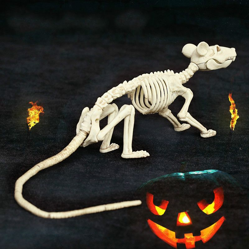 Skeleton Mouse100 Plastic Animal Skeleton Bones For Horror Halloween Decoration In Party Diy Decorations From Home Amp Garden On Halloween Horreur Squelette