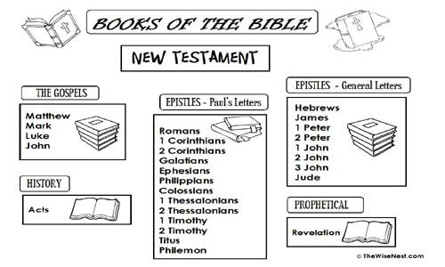 Worksheets Books Of The Bible Worksheet books of the bible worksheet biblical saint marys press old testament puzzles google search sunday school 4th grade