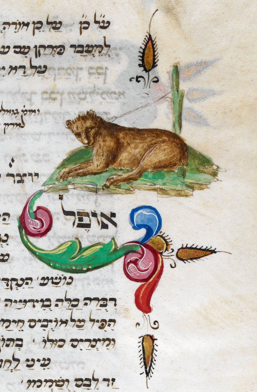 Lioness--Festival prayer book, Italian rite Origin Italy Date 3rd quarter of the 15th century Language Hebrew