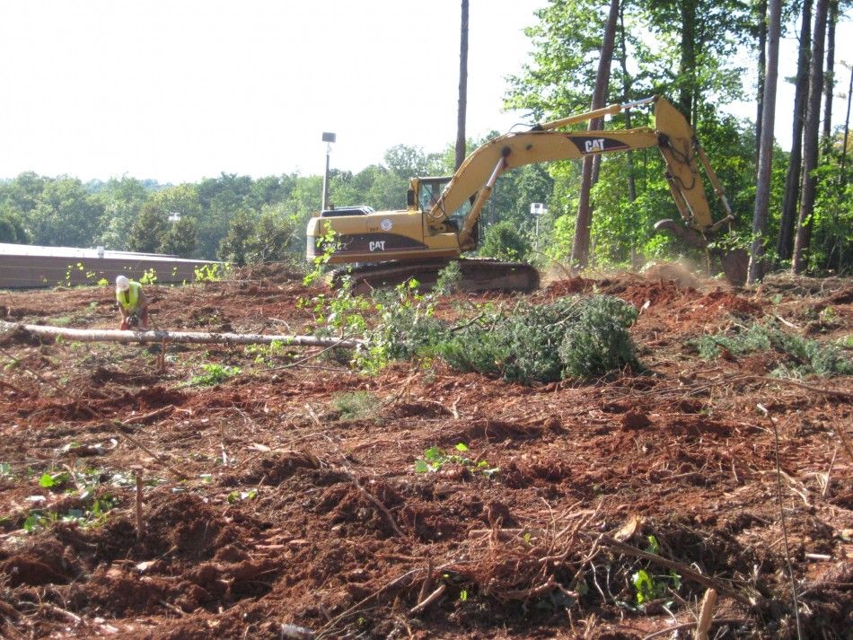 Grubbing The removal and disposal of stumps and roots