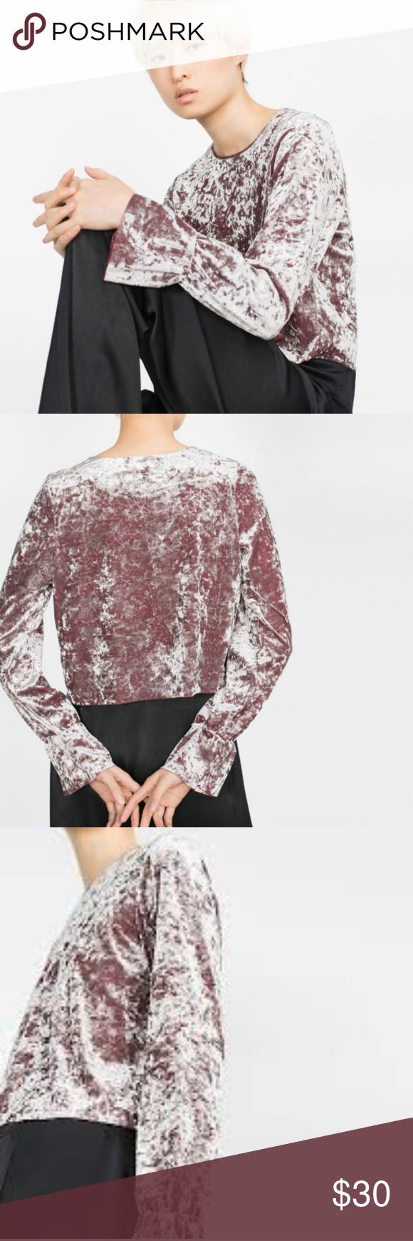 50ab5b156f0 Zara Dusty Pink Velvet Long/Bell Sleeve Crop Top Gorgeous textured ...