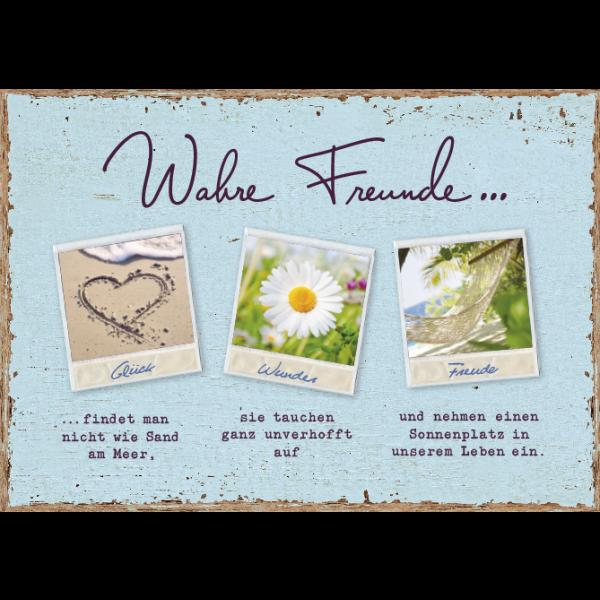 Wahre Freunde/Bild1