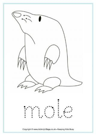 Mole Activity Sheets Mole Nerd Crafts Nocturnal Animals