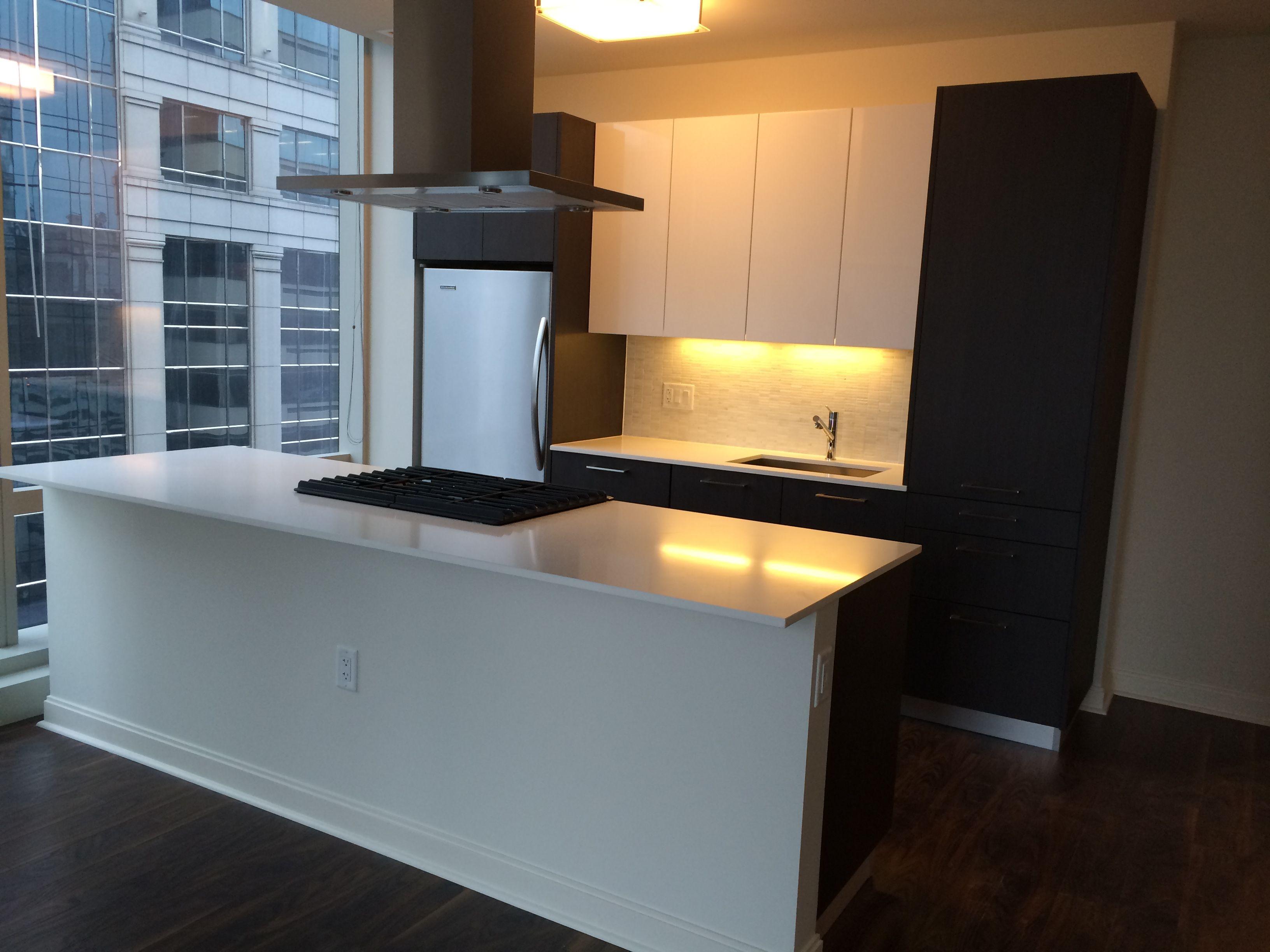 Chicago NorthLoop Apt Apartments Rentals Kitchen