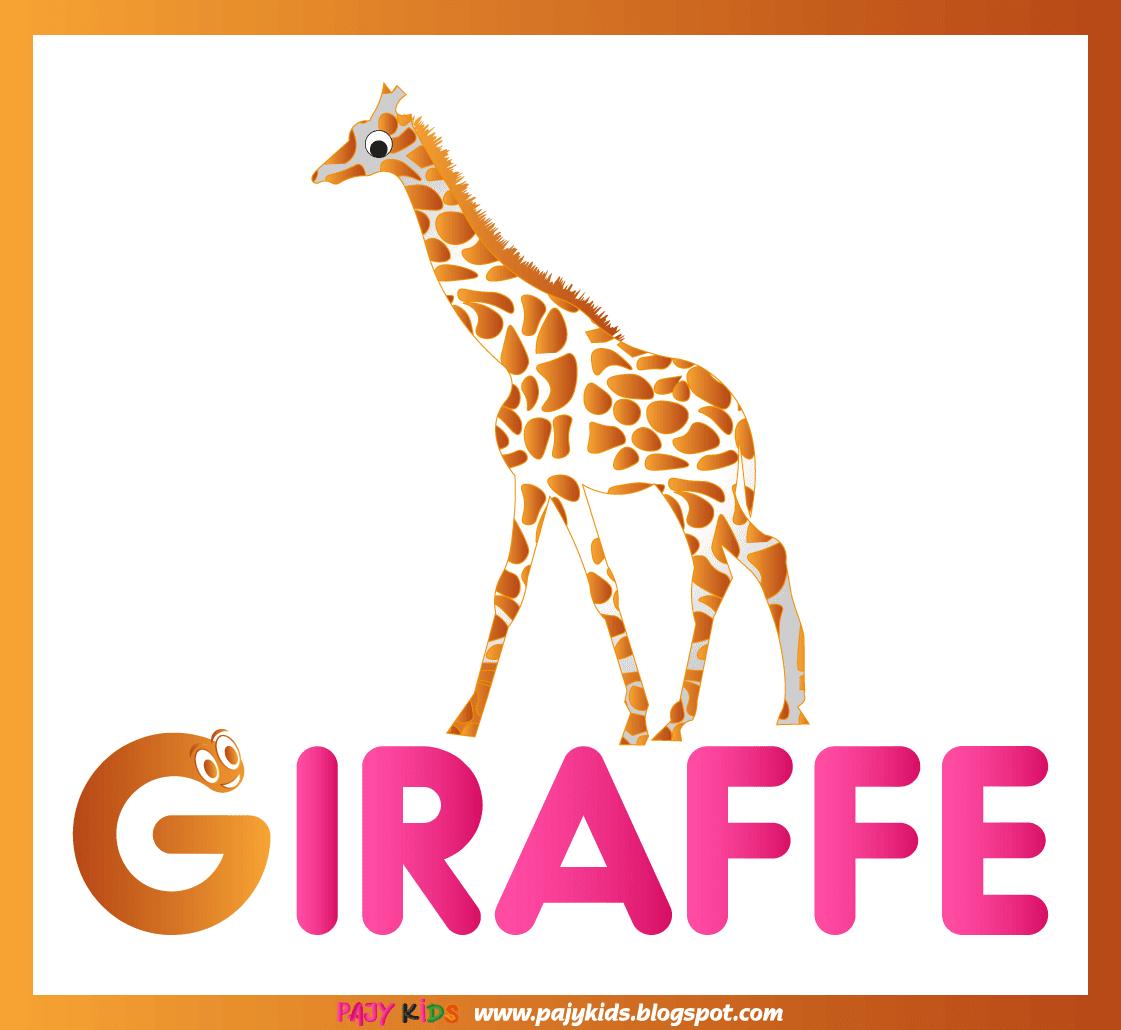 تعلم الحروف الانجليزية للاطفال طريقة تعليم الحروف الانجليزية للاطفال تعليم الاطفال الحروف الانجليزية تعليم الحروف الانجليزية للاطفا Giraffe Letter G Animals