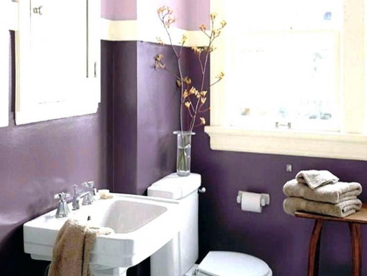 Bathroom Paint Ideas Images
