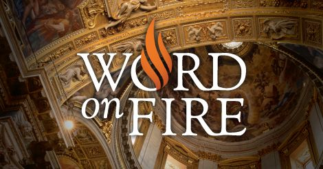Word on Fire - super website, great Catholic resource  I